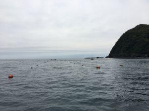 張られた漁礁設置用のロープ